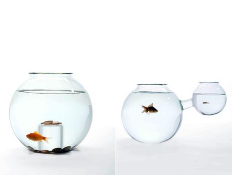Fish Bowls Galore Yanko Design