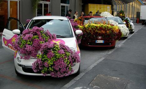 Flowery Fiat