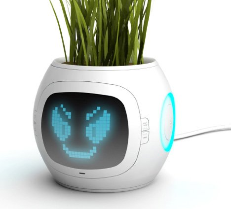Image of digital plant thermometer pot usb