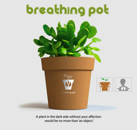 Breathing Plants Demand Attention