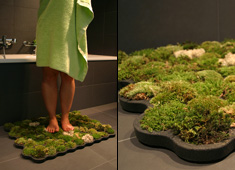 Immaculate Mini Lawn In Your Loo