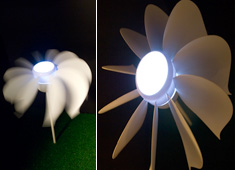 Self-sustaining Flower That Blooms At Dusk