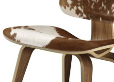 Eames Select Molded Plywood Chair