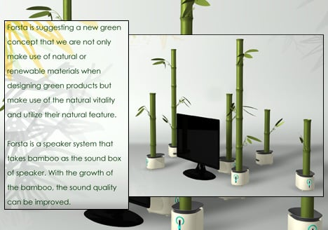 Grow A Bamboo To Get Better Sound