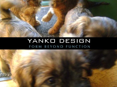 Top Ten Pet Designs on Yanko Design