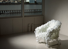 Feather or Leaf, I Love This Chair