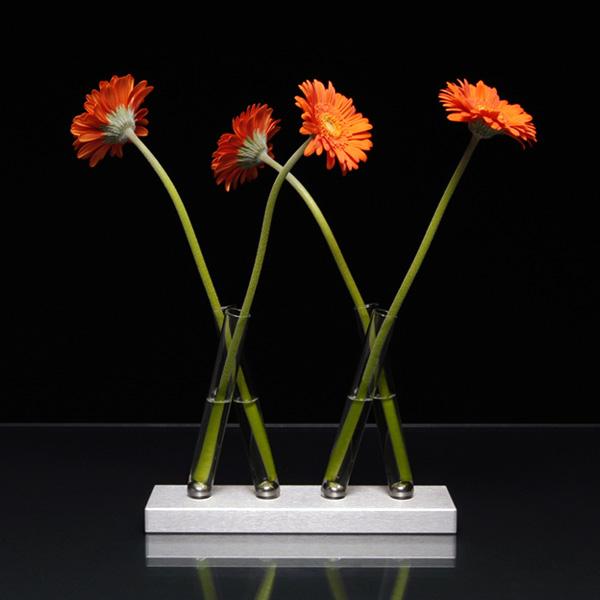 Adaptation Vases