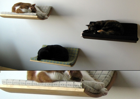 The Curve Pet Bed by Akemi Tanaka