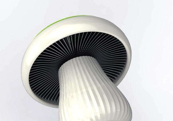 mushroomahu5