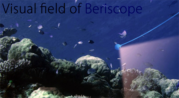 beriscope7