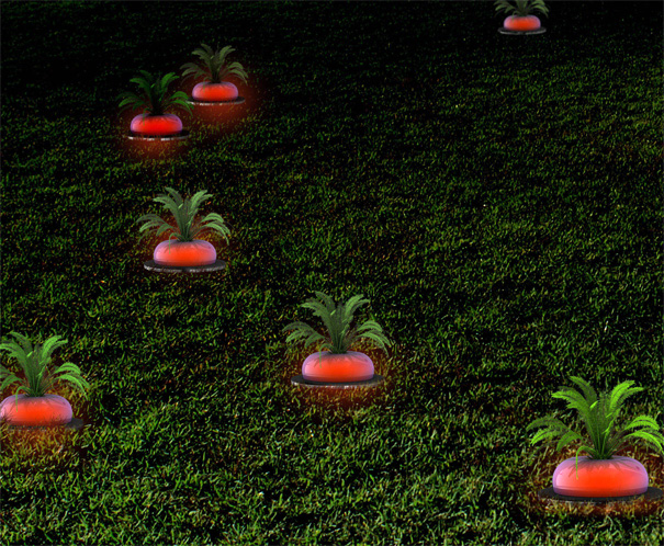The Ripe Radish Solar Energy Lamp by Arthur Xin