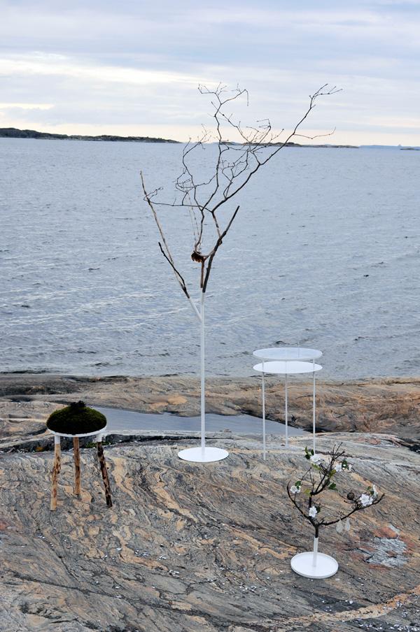 Vivid- Nature Displays by Sara Roxana Melvinson