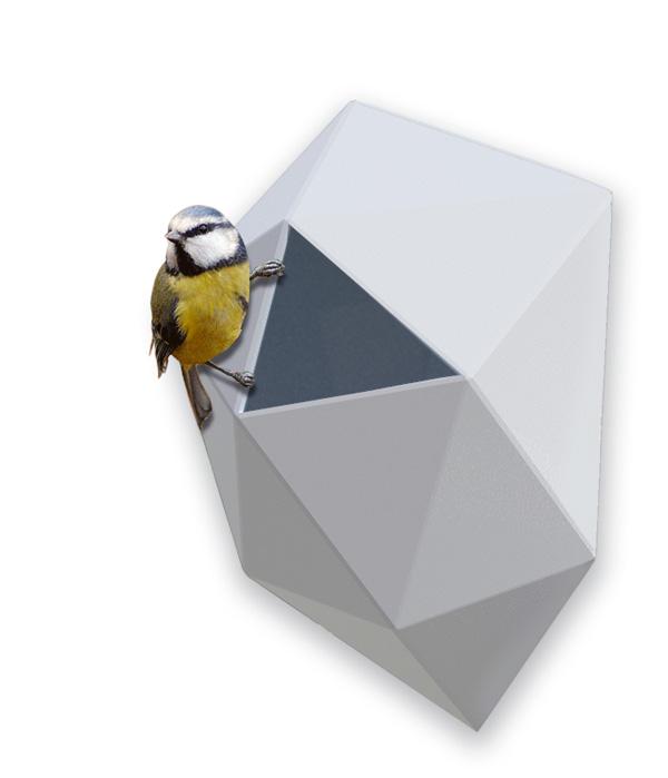 Home for the Modern Bird