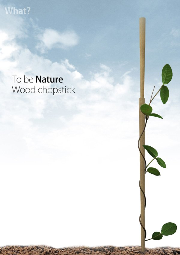 To Be Nature Wood Chopstick by Gyeongwan Koo (Oliver)