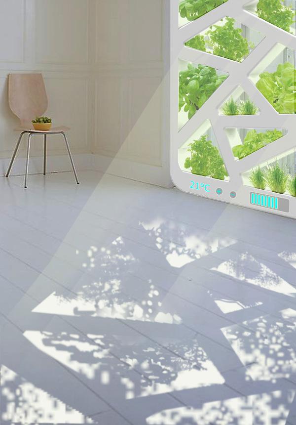 Plant Window by Jianxing Cai, Chao Chen, Qi Wang, & Jiang Wu