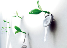 Make Your Walls Come Alive