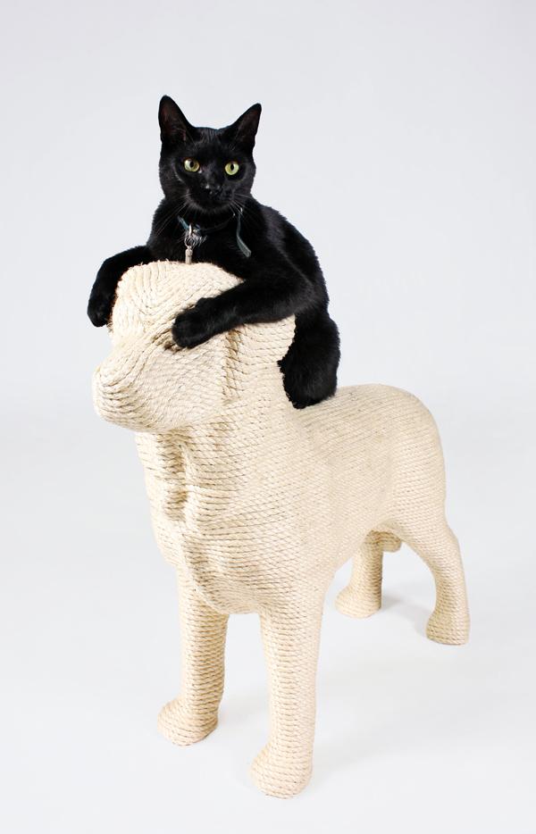 Lumpi - Cat Scratcher by Erik Stehmann