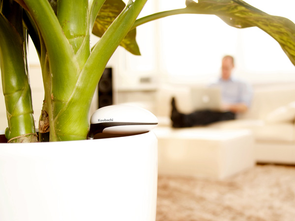 Friday Giveaway: Two Koubachi Wi-Fi Plant Sensors To Be Won