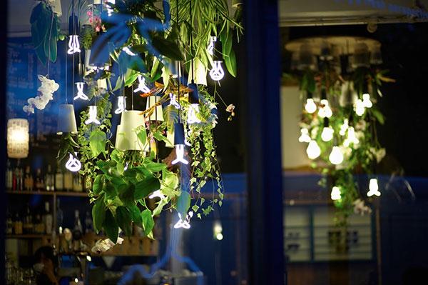 decora o com plantas iluminadas cria lustre vivo para bares mat ria inc gnita. Black Bedroom Furniture Sets. Home Design Ideas