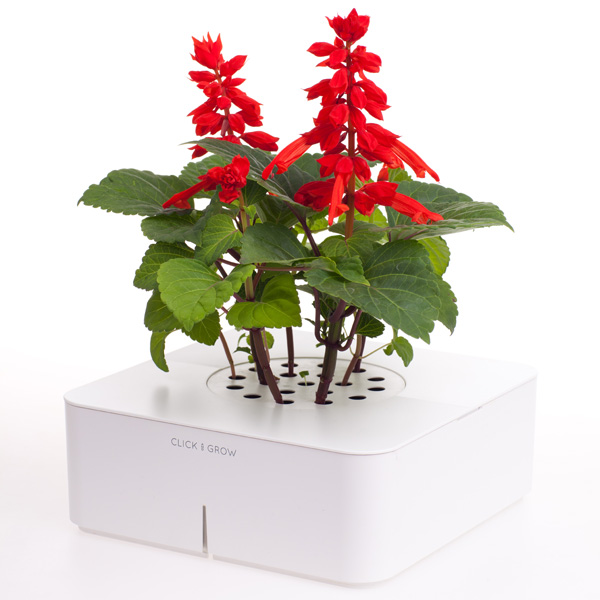 Click & Grow – Electronic Miniature Garden by Mattias Lepp