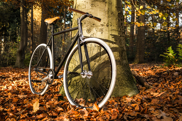 Prefixed Fixie Bike