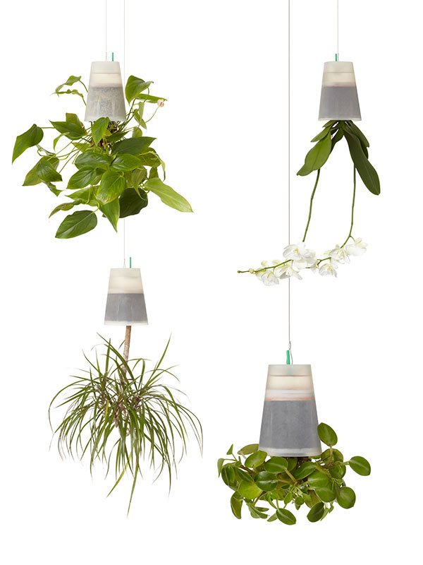 Boskke Sky Planters Now in Clear