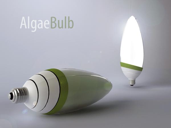 AlgaeBulb by Gyula Bodonyi