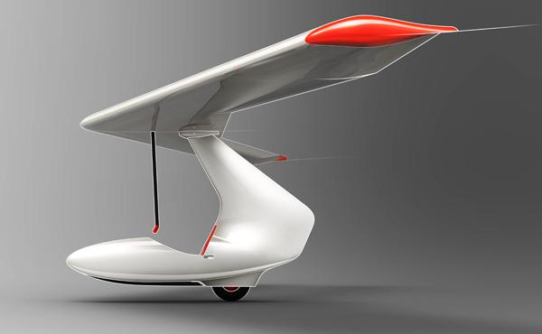 Delta - Foam Glider by Alexander Shevchenko