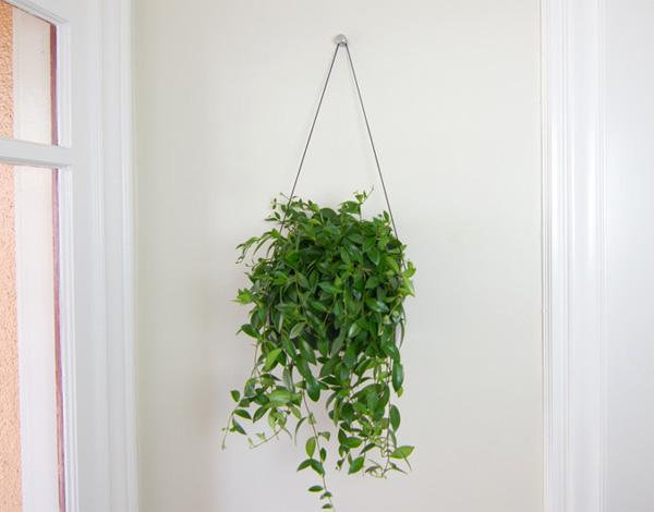 The Elegant Simplicity Of Growing Plants Yanko Design