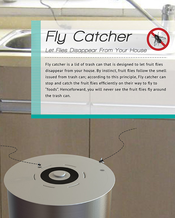 fly_catcher