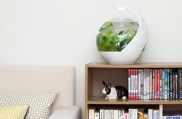 Avo self cleaning fish tank conceptcus for Avo fish tank