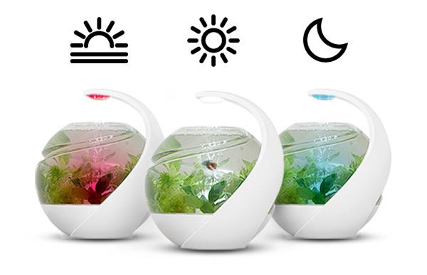 The best fish tank ever period yanko design for Petit aquarium design