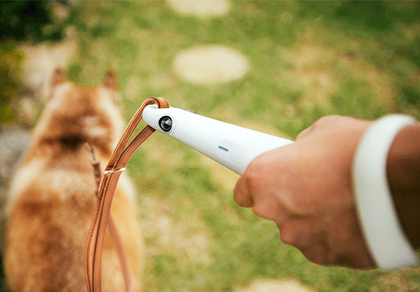 Gori – Pet Camera by Chan Hong Park, Hyunwoo Jang and Ga-ryeong Seo