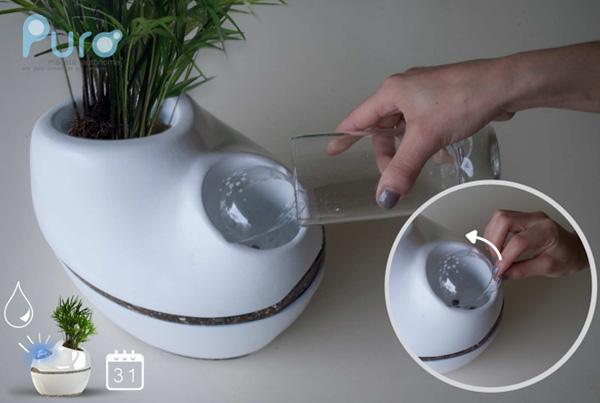 Flower-pot for the Forgetful - image puro_planter_4 on http://bestdesignews.com