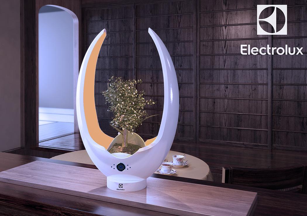 electrolux_designlab15