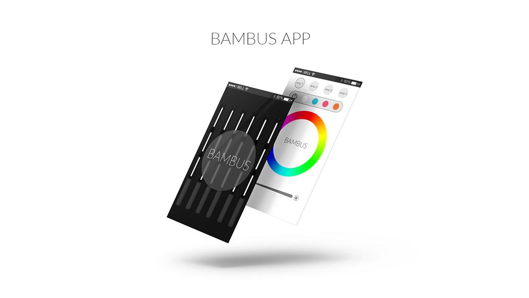 bambus_04