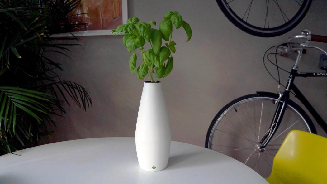 amphora_planter_14