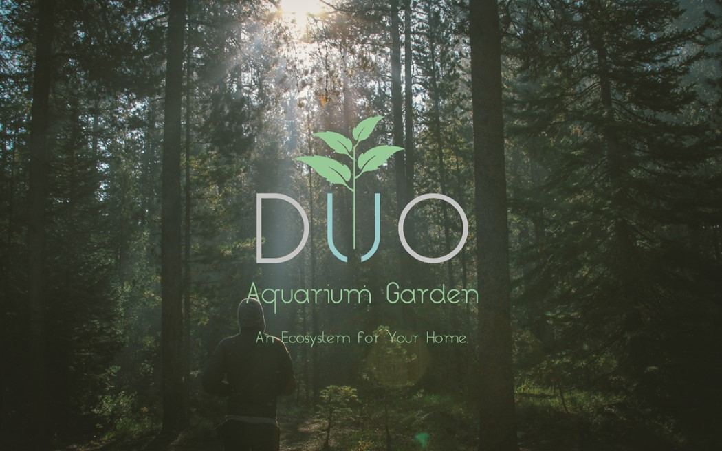 duo_aquarium_1