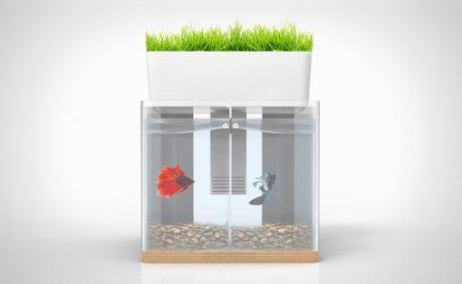 duo_aquarium_2