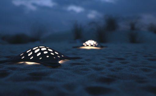 turtle_solar_lamp_1