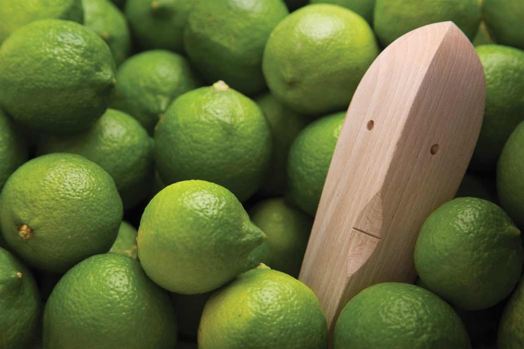 juice_bruce_lemon_juicer_7