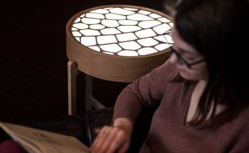 monai_light_table_6