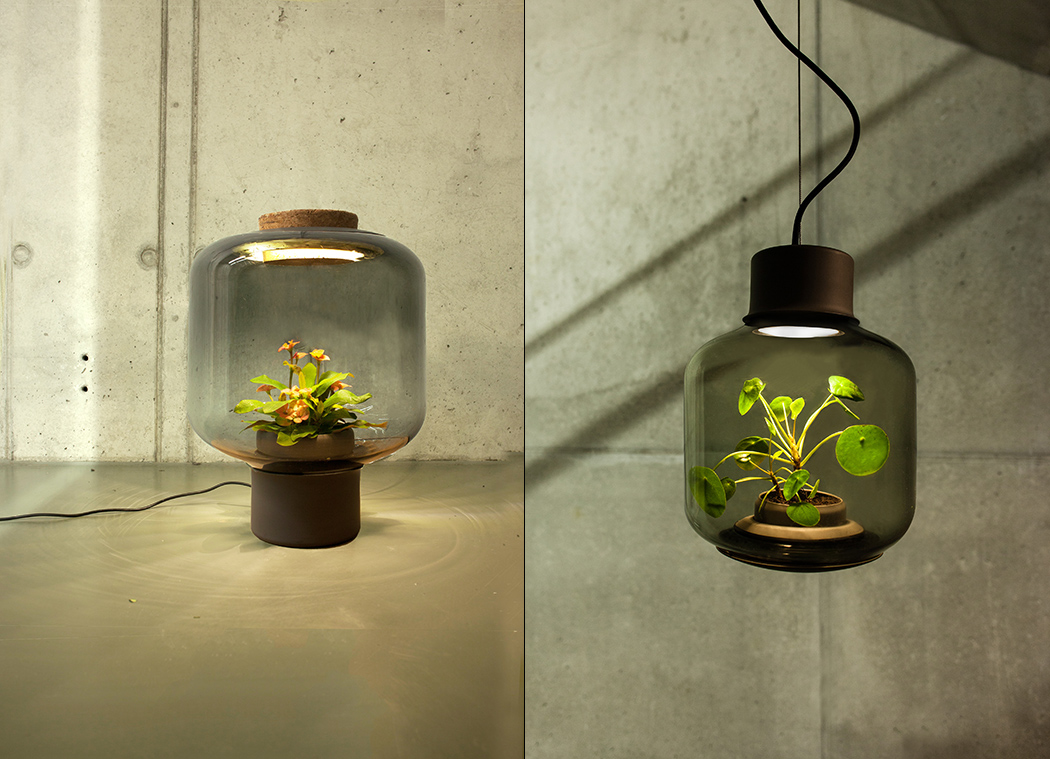 Let There be Plantlight!