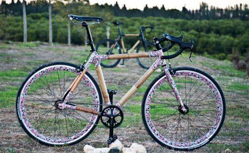 bambu_cycle_1