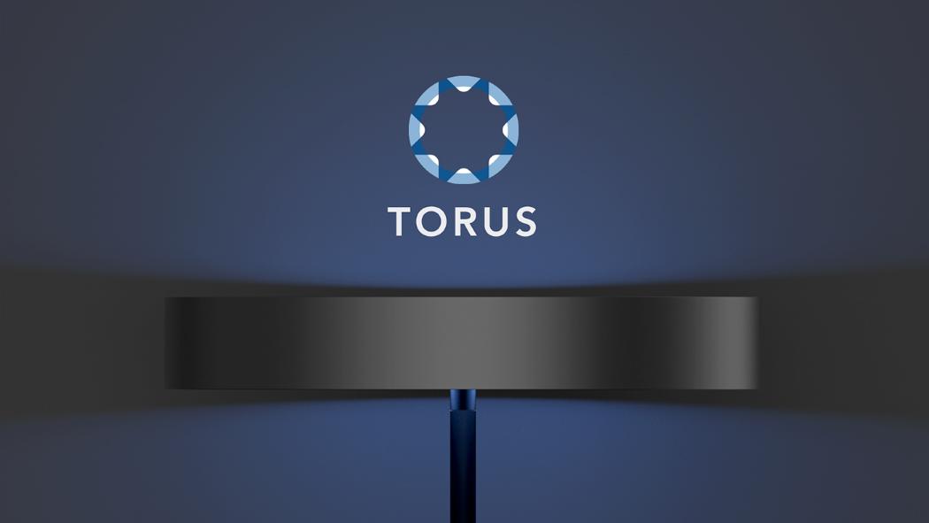 torus_fan_1
