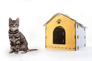 DIY Feline Digs!