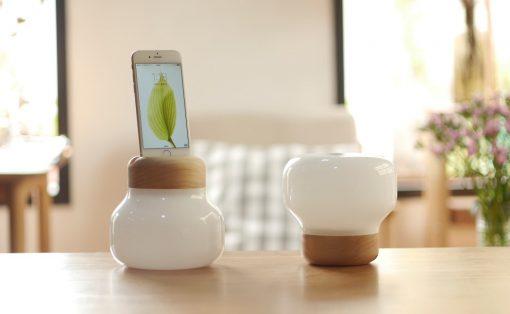 mushroom_lamp_2
