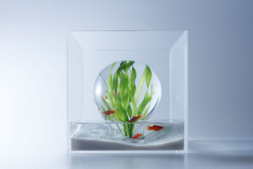 waterscapes_fishbowls_1