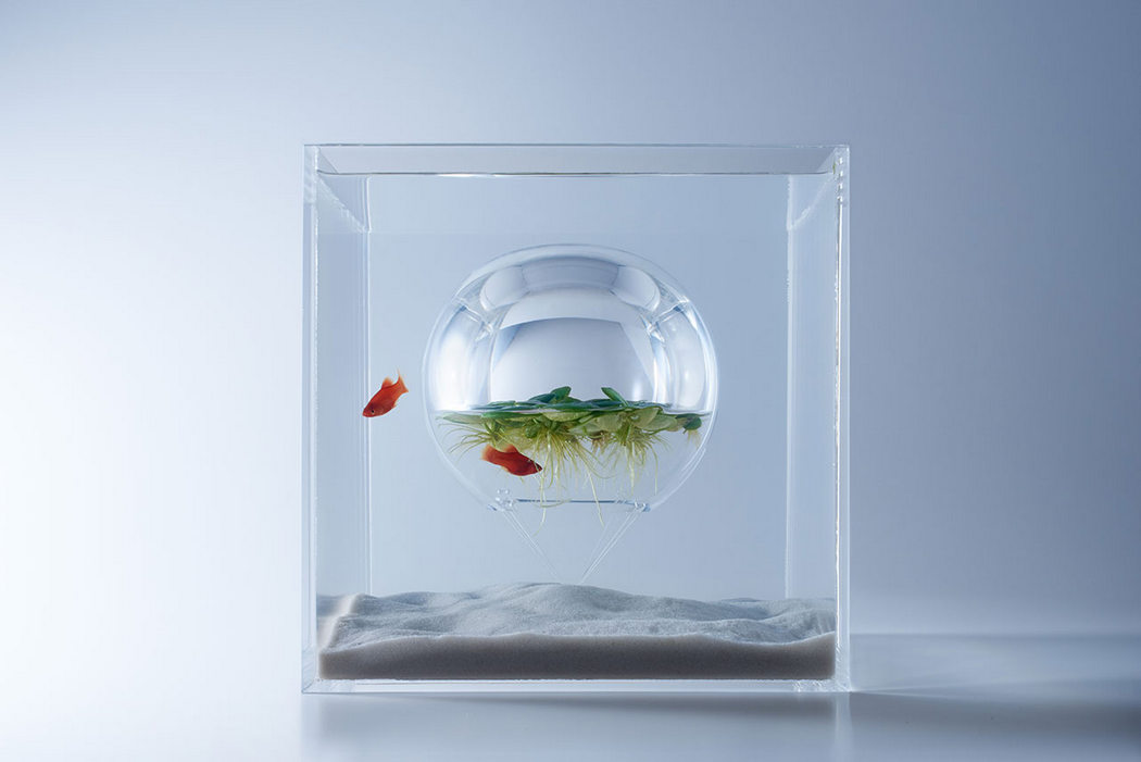 waterscapes_fishbowls_3