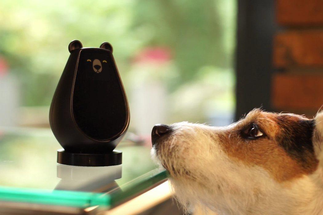 bearbot3